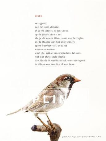 Plint Poeziekaarten Navulset 'Dectie' Hans Hagen