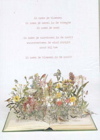 Plint Set van 10 A4 poëzieposters ik noem je bloemen Jan Hanlo