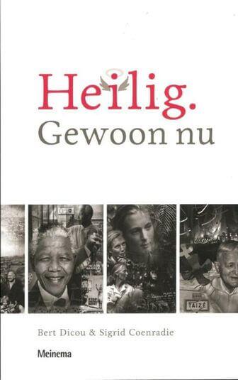 Heilig. Gewoon nu (e-book)