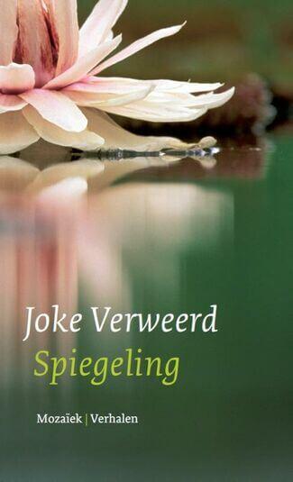 Spiegeling (e-book)