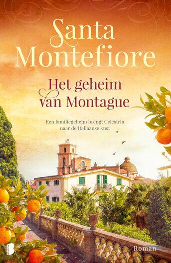 Het geheim van Montague (e-book)