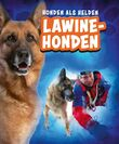 Lawinehonden