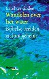 Wandelen over het water (e-book)