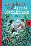 Het geheim van de rode voetbalschoen (e-book)