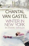 Winter in New York (e-book)