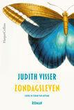 Zondagsleven (e-book)