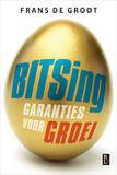 Bitsing (e-book)