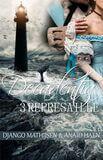 Represaille (e-book)