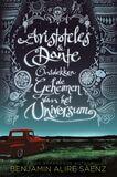 Aristoteles & Dante ontdekken de geheimen van het universum (e-book)