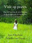 Visie op pesten (e-book)