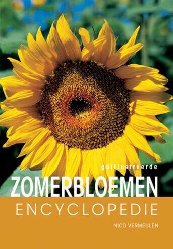 Geillustreerde zomerbloemen encyclopedie